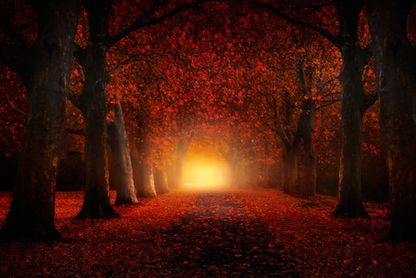 Autumn-feeling-by-Iv--n-Maigua park
