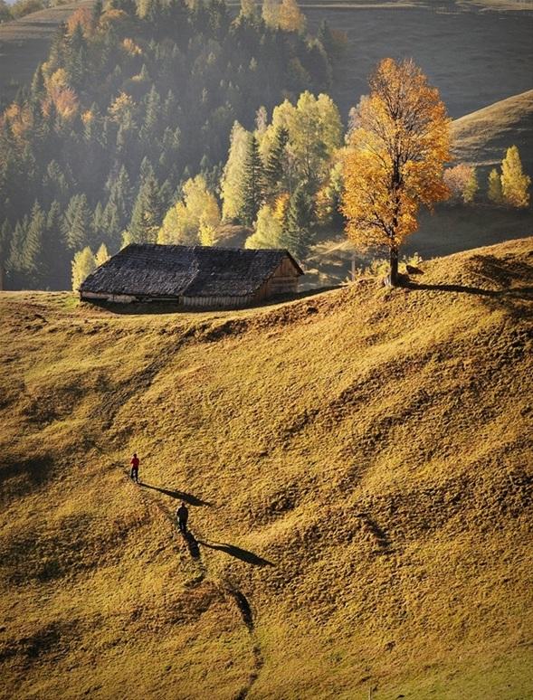 słoneczna chatka