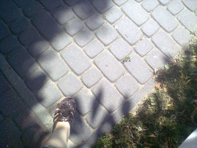 Zdjęcie0587