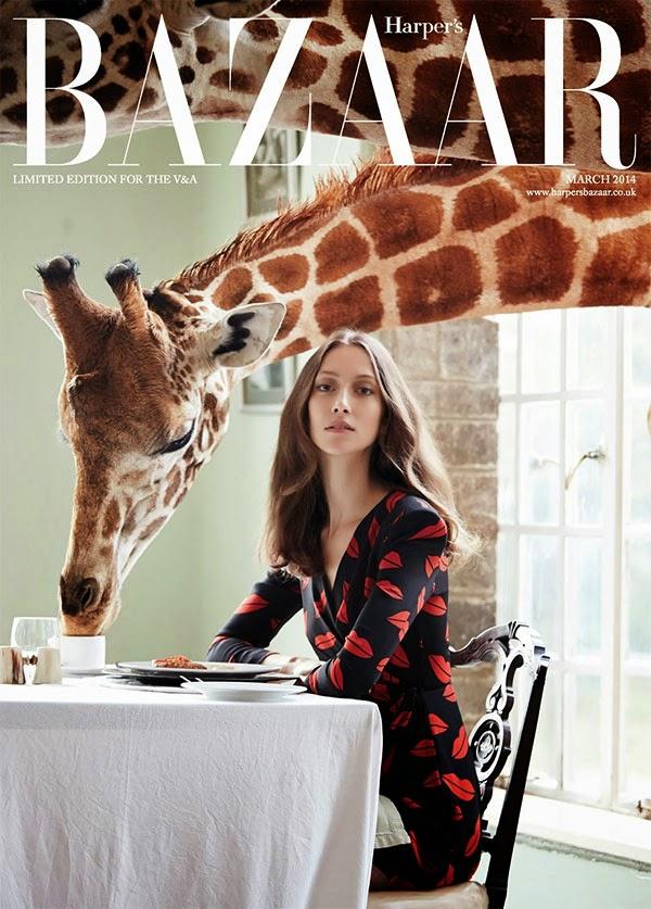 żyrafa na wspólnym śniadaniu