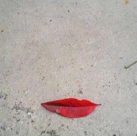 liść-usta